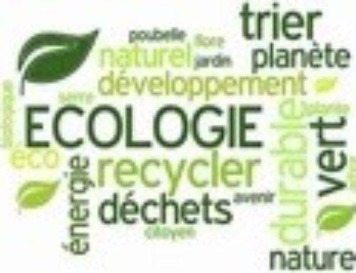 L'écologie de marché